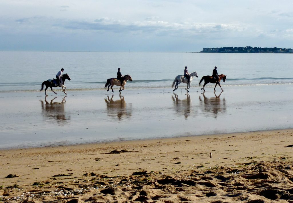 Idée de randonnée insolite : sur la plage