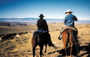 Idée de randonnée insolite : le ranch