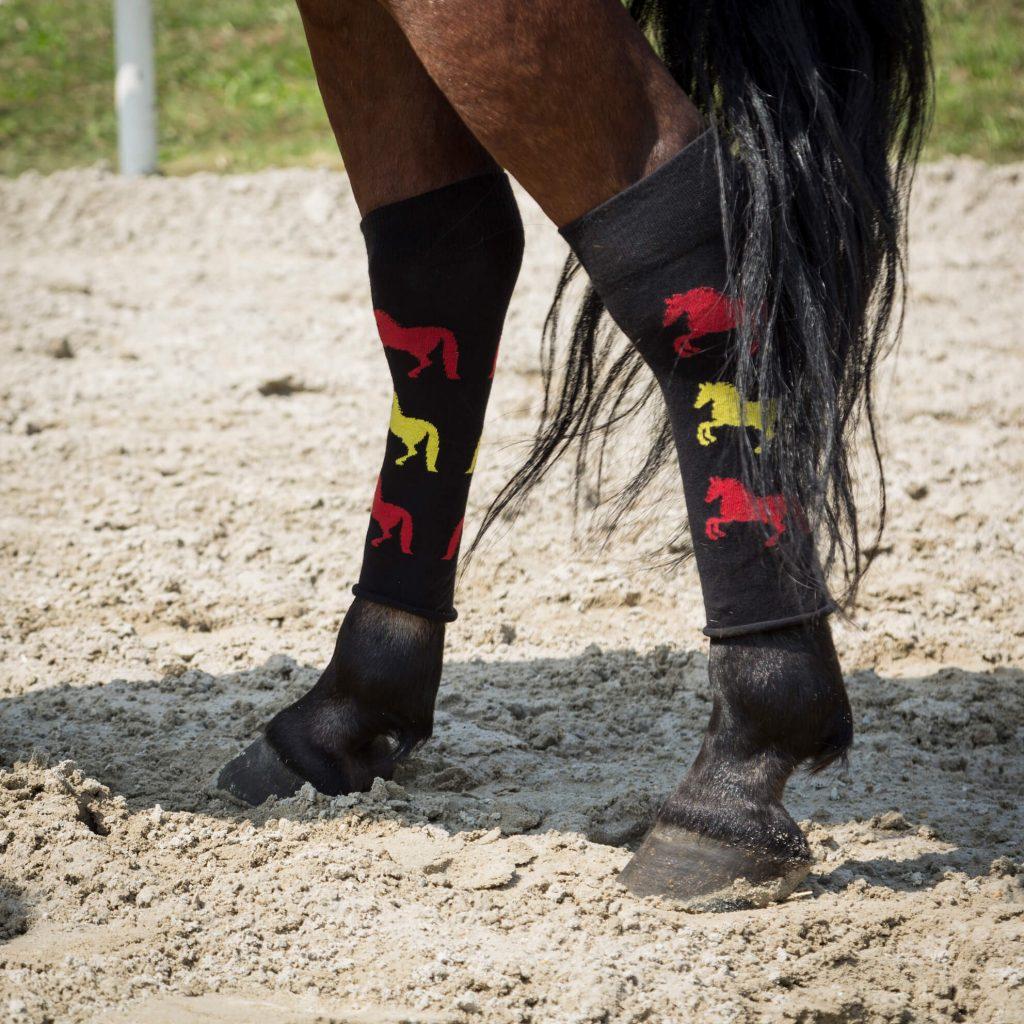 chaussettes d'équitation motif 3 chevaux