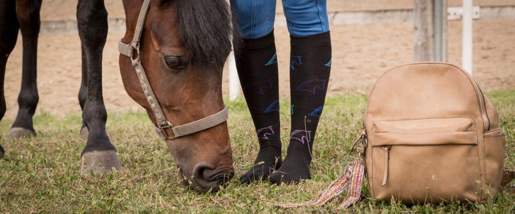 chaussettes noires chevaux