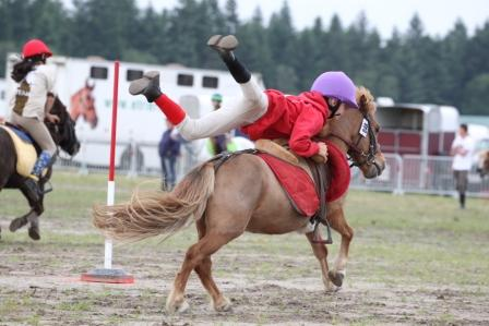 Grand Tournoi de Lamotte Pony Games