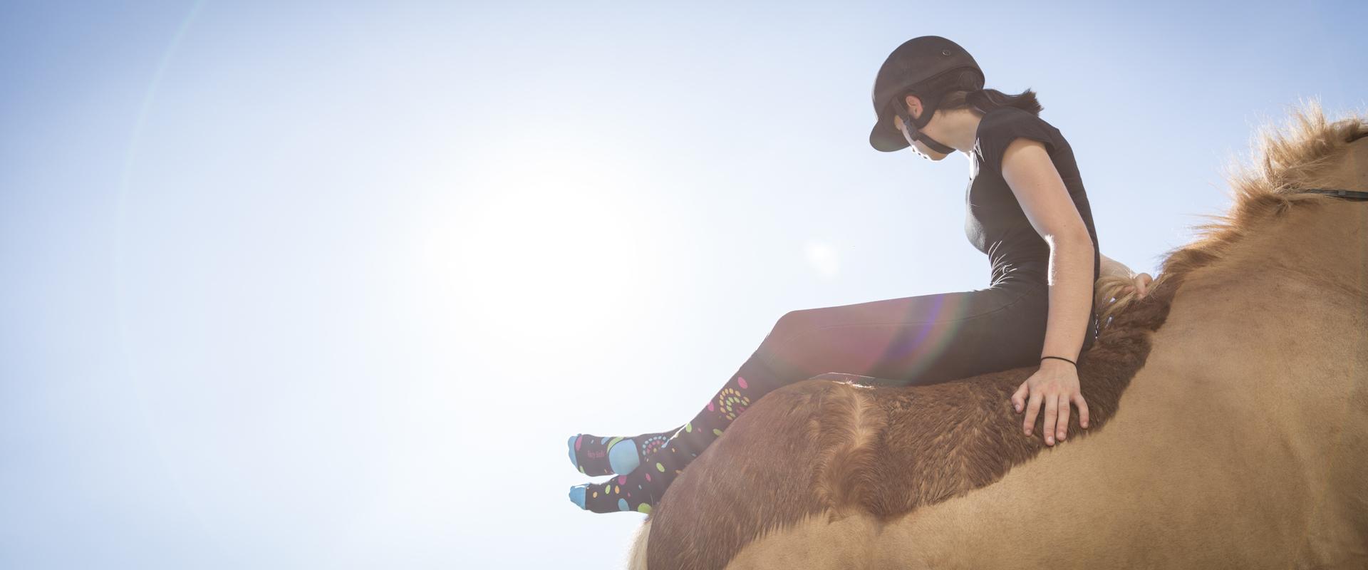 journée du soleil équitation