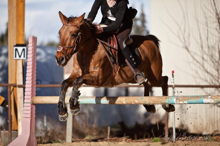les sauts sont le moments où l'on fait le plus de chutes à cheval